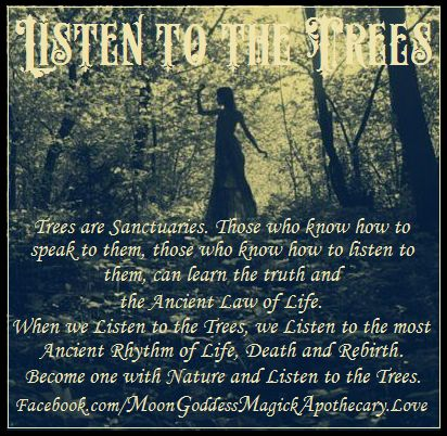 Through Witchy Eyes - Pinned by The Mystic's Emporium on Etsy
