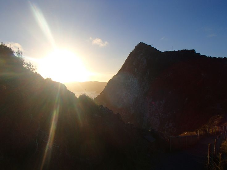 Nugget Point, SI, NZ
