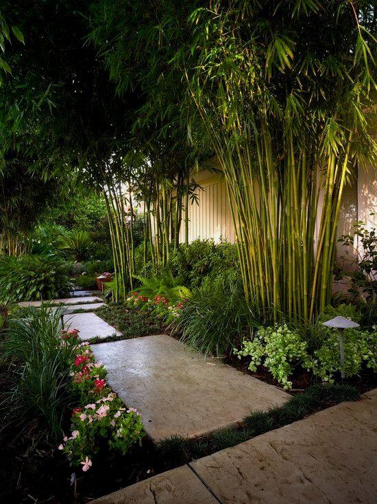 Japanese Garden Front Yard Designs   Japanese Garden Designs ... on tropical and flower garden ideas, hawaii garden design, tropical garden landscape design, exotic garden design,