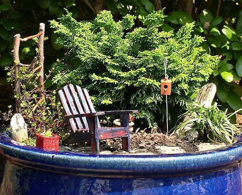 A Backyard Mini Garden