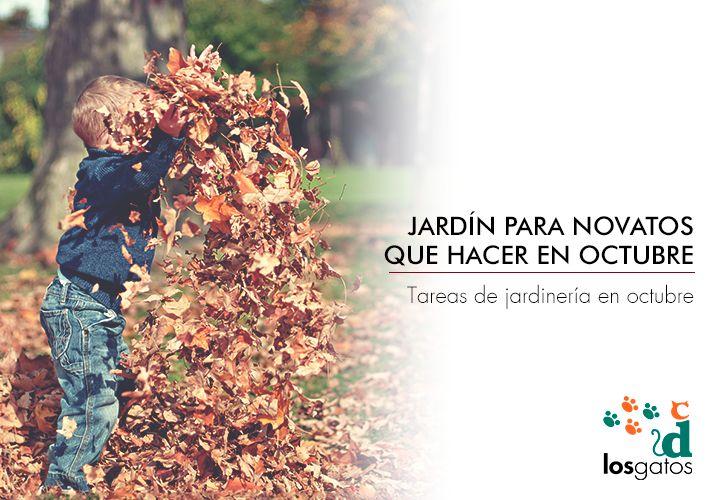 Tareas de jardineria en octubre