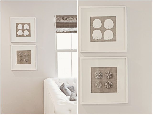 coastal shell art with IKEA frames  loveIdeas, Shell Art, Shadowbox, Ikea Frames, Shells Art, Shadows Boxes, Boxes Frames, Sands Dollar, Diy Shells