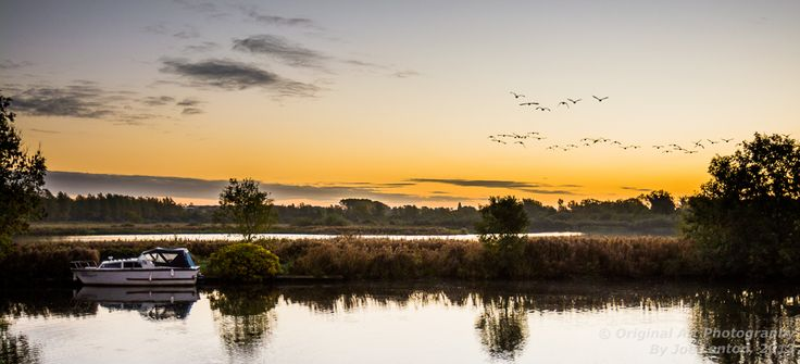 Geese fly off into the rising sun over the river Yare in Norfolk