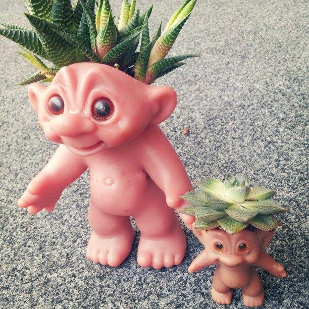 Trolls pot for succulents