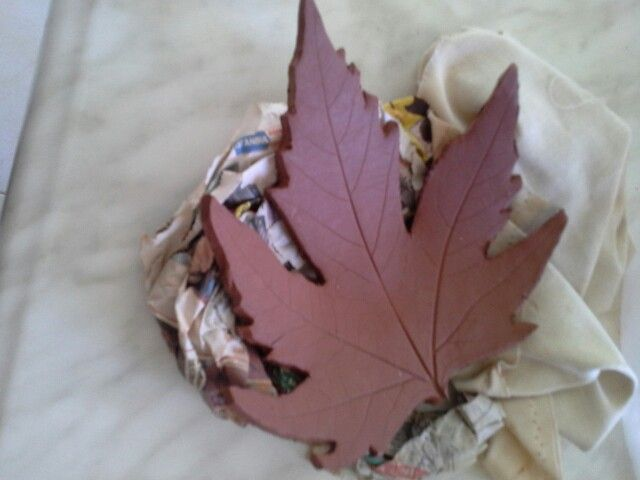 Çınar yapragi