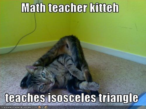 Isosceles Triangle Math Memes Puns Jokes Pinterest