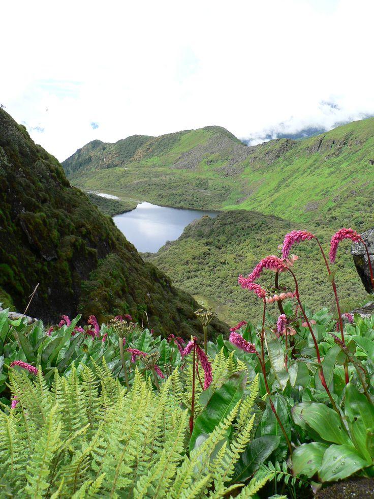 High altitude wetland in eastern Himalayas  #wetland #Himalaya #biodiversity #lake #mountain #water #conservation #empowerment #Arunachal @PragyaNGO