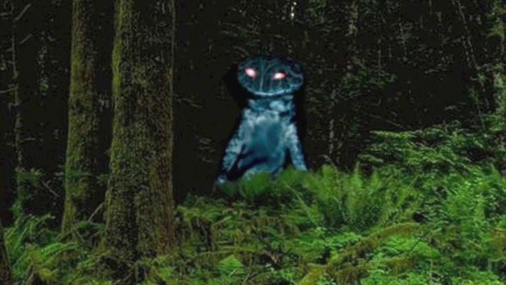 Terrible Monsters Caught On Camera 2016 Real Ghosts Yeti Chupacabra Bigfoot