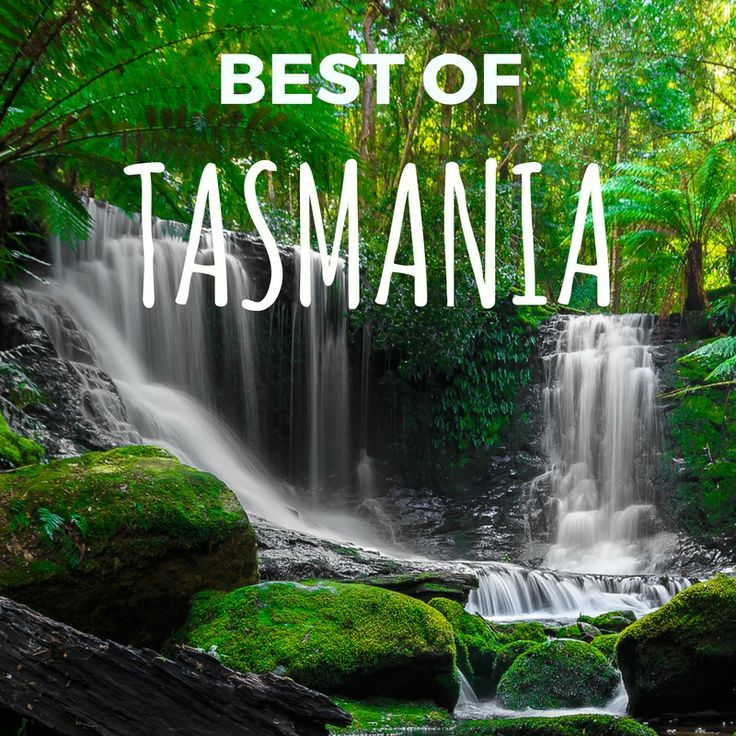 Perfect Tasmania. Experience what the island state is world renowned for - idyllic scenery, abundant wildlife, gourmet food and wine, art and friendly locals.