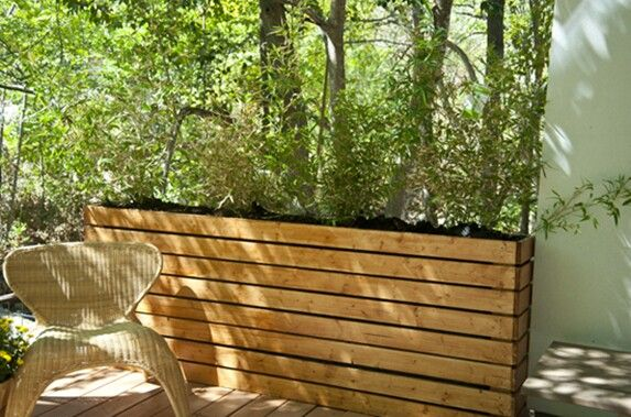 Tall thin wood raised planter box for bamboo grass greens along fence behind patio