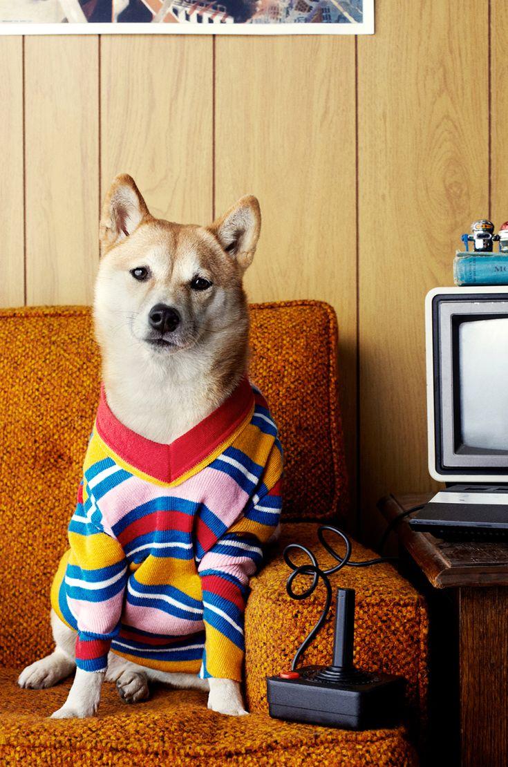 retro doggy style