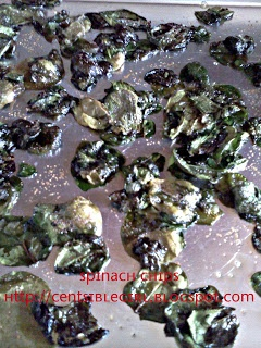Baked Spinach Chips with Garlic | Food! | Pinterest