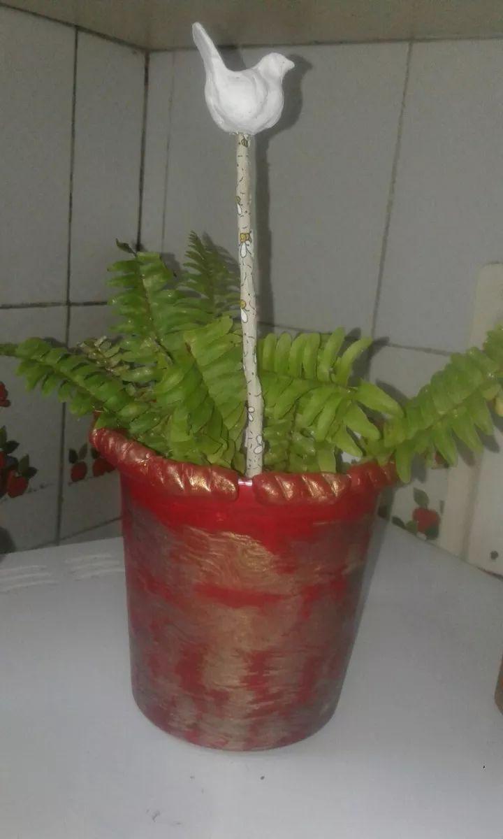 planta helecho serrucho en maceta reciclada.