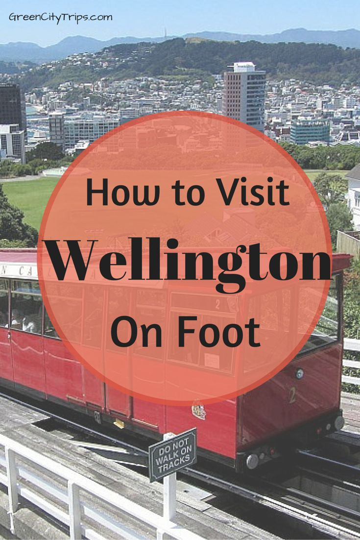 How to Visit Wellington, New Zealand, on Foot | Green City Trips http://greencitytrips.com/how-to-visit-wellington-new-zealand-on-foot/