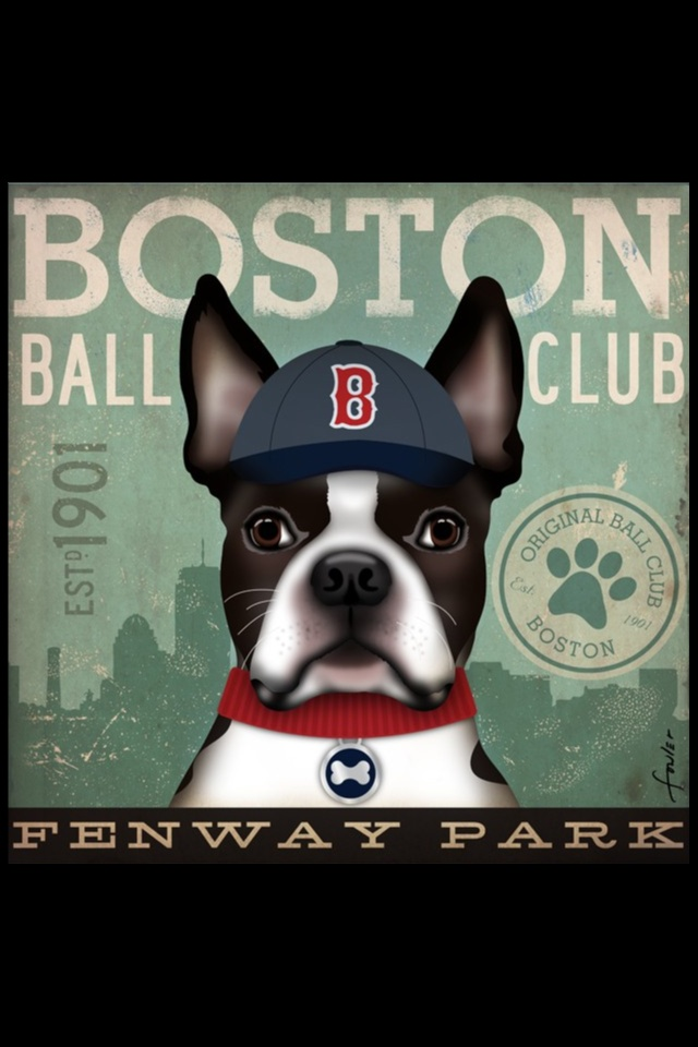YUP ~  I  HAVE MY OWN BASEBALL PARK  IN BOSTON, MASSACHUSETTS