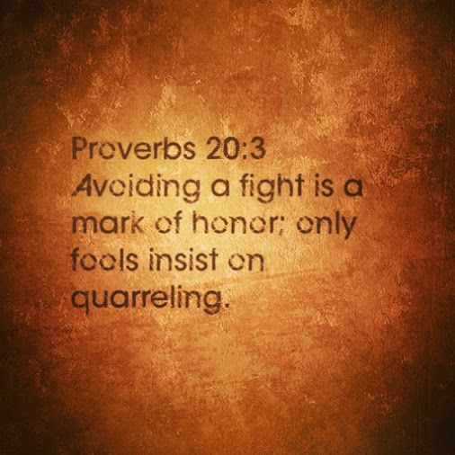 "Proverbs 20:3  ""It is an honor for a man to keep aloof from strife, but every fool will be quarreling."" ESV"