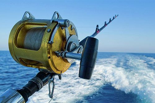 Cabo San Lucas is a prime destination for sport fishing, offering a wide range of targeted species and plenty of options for boat rentals and new experiences. Make your visit the provided link to hire affordable Cabo fishing charters.   #Cabofishingcharters