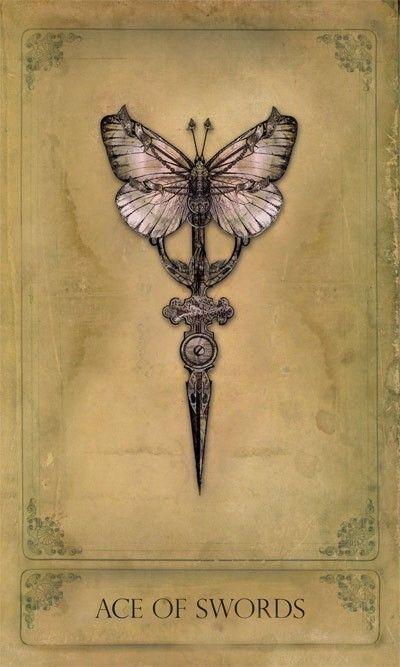 the butterfly vibrator maithuna ritual