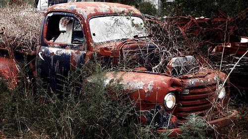 Morgan County Old Ford Pickup