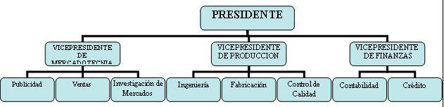 Departamentalización por función: se agrupan las actividades de la empresa.