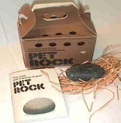 Pet Rock Care Instructions