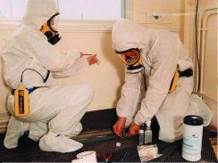 Click here for more information on our website: http://www.beasbestosremoval.com.au