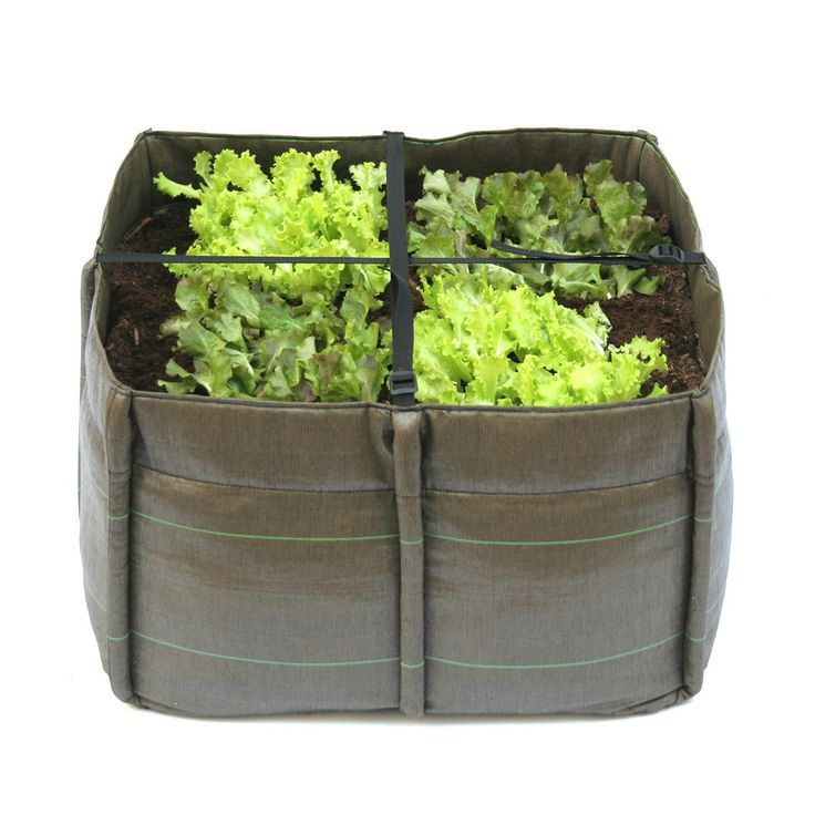 No place for a garden? How about a plant bag that features four compartments for gardening.   It's lightweight, 100% recyclable, and made of double-walled geotextile fabric. Bacsac plant bags can be used in any environment and have all the features you want in a high quality planter: they let water pass through, allow the soil to breathe, and limit evaporation.