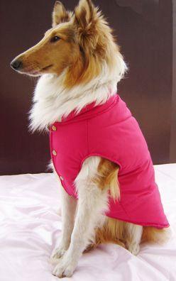 Dog Coats for Winter | Lovely Dog Shop