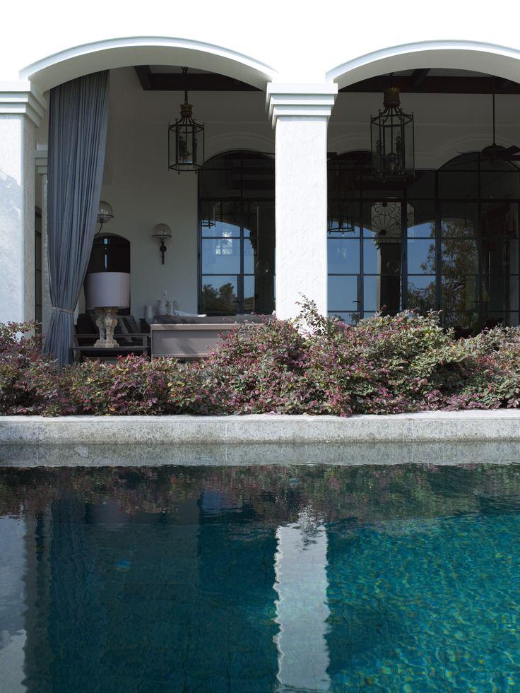 Loropetalum and pool
