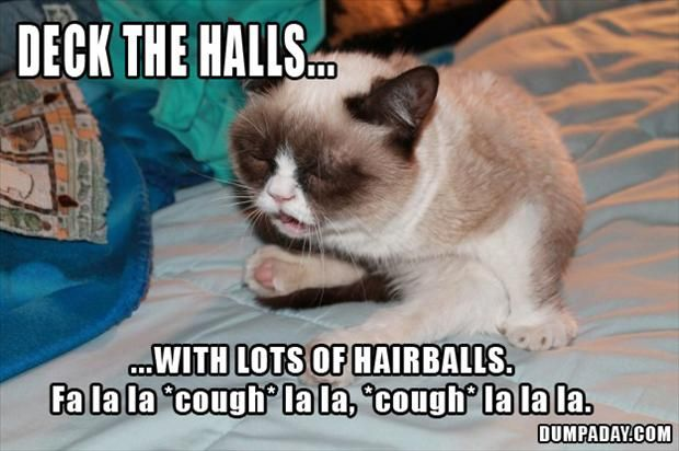 grumpy cat, deck the halls with lots of hairballs