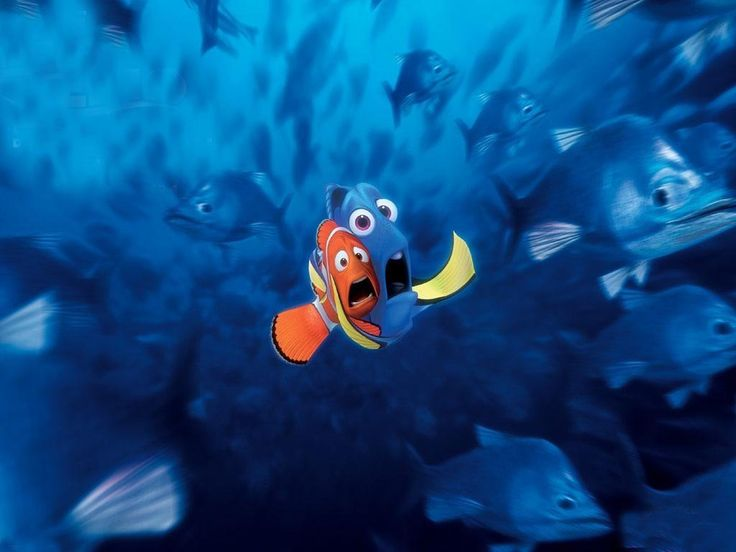 This is a powerful image that shows nemos dad and his friend doreen scared as they get caught up in a school of fish. This is an image that will make people want to see the film.