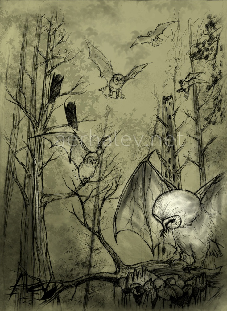 Nuntios, creatures of the Enchanted Forest.
