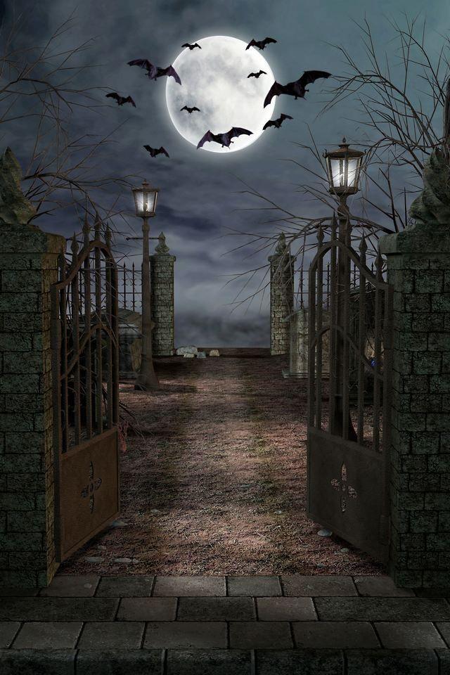 , Witch, Goblin, Black Cat, Jack-O-Lantern, Bat, Ghost, Spooky ...