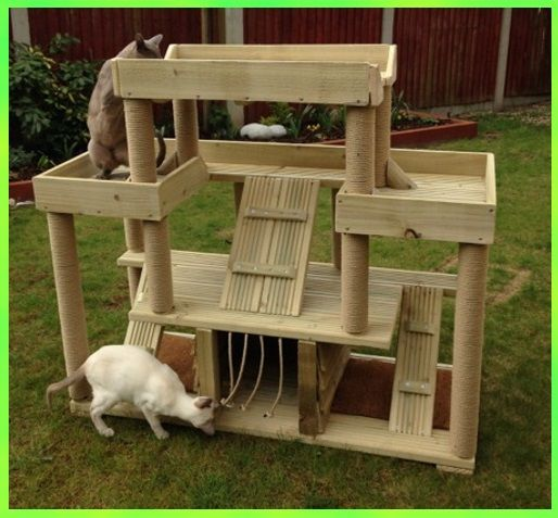 Best 25 cat climbing shelves ideas on pinterest cat for Castle cat tower