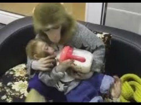 Милота! Обезьянка из соски кормит малыша! Really cute! The monkey nipple...
