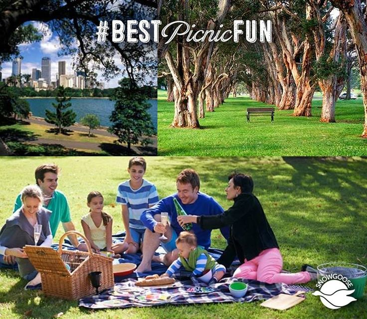 Dubbed the 'People's Park', Centennial Parklands Sydney is a must for the picnic list - lush surroundings, walks, cycling, horse riding, kids playgrounds - it has it all! #BestNaturePicnic #FamilyPicnics #Picnics #PicnicWithFriends #SydneysBestPicnicSpots #CentennialPark #SnowgooseGiftHampers