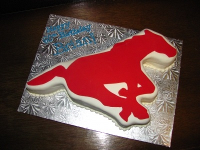 Calgary Stampeders Horse By Lovebug20 on CakeCentral.com