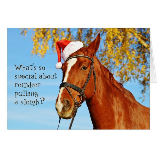 Horse Equine Santa Hat Funny Christmas Card #cards #christmascard #holiday