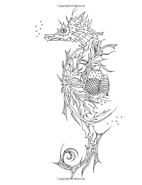 38 Best Images About Coloring Pages On Pinterest