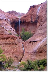 Looking for Zion National Park Hotels? Stay in St.George, Utah only 45 minutes from Zion National Park!