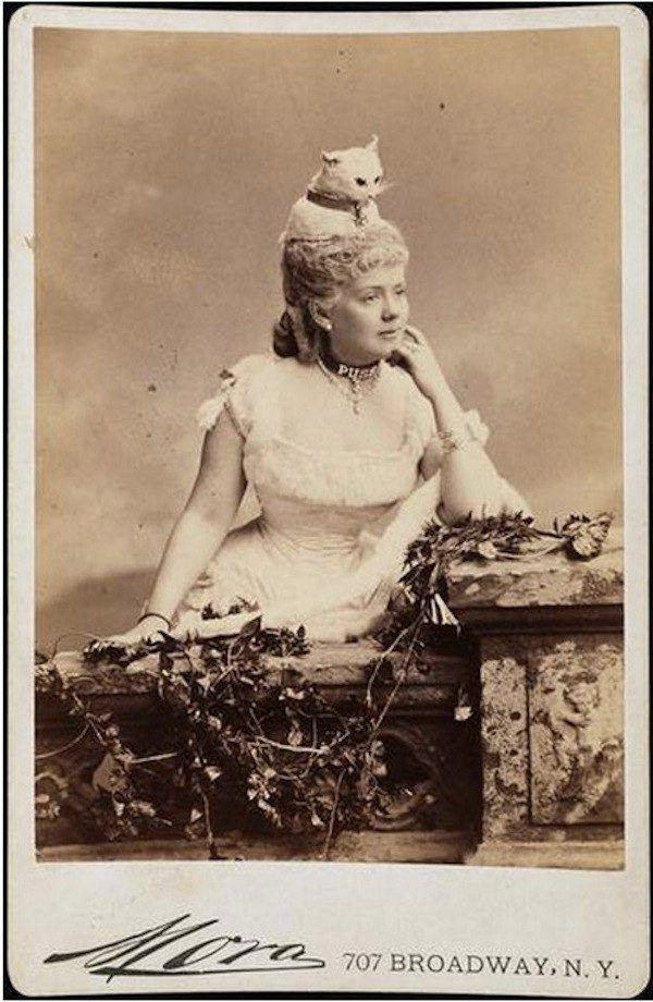 Причёску этой викторианской модницы украшает чучело кошки, а лиф платья – настоящие кошачьи хвосты, 1883 год.Всё самое лучшее из интернета