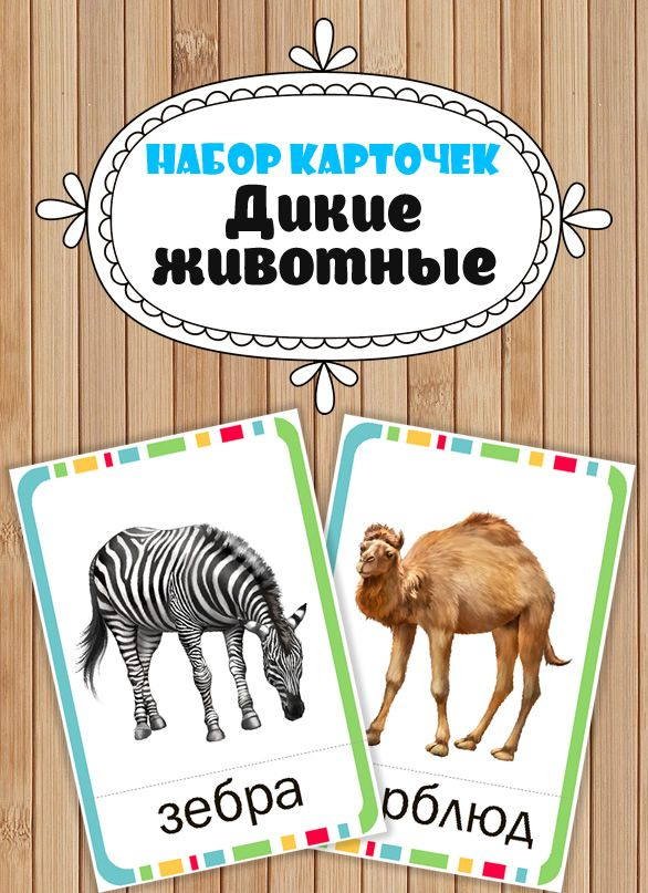 """Карточки """"Дикие животные"""" могут быть использованы, как в образовательных целях, так и в различных играх и конкурсах."""