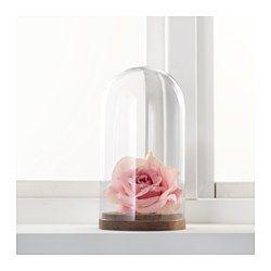 h rliga my new place pinterest cloche en verre cloche et ikea. Black Bedroom Furniture Sets. Home Design Ideas
