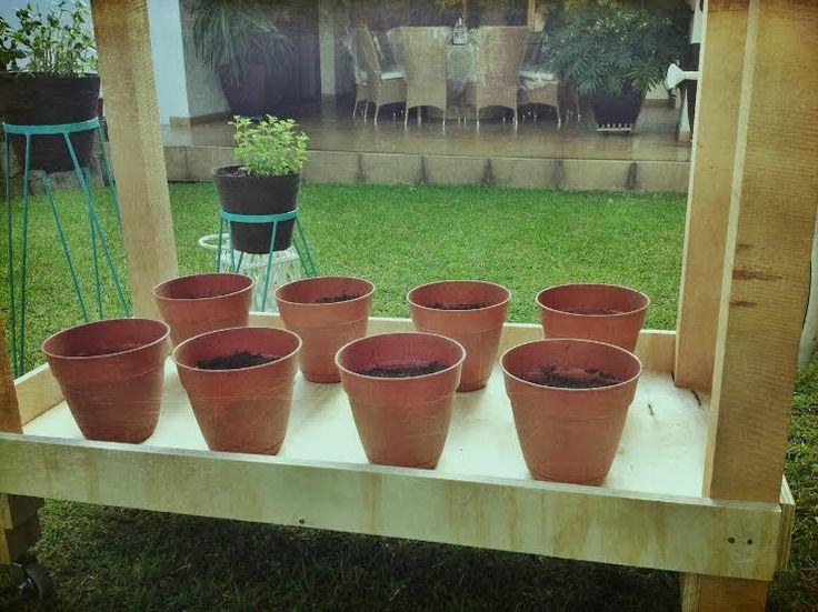 Pusimos nuestras macetas con tierra en la jardinera GREEN CODECO, para poder colgarlas y poder empezar con nuestra instalación del sistema de riego y que sea muy eficaz. Ale Gómez Plasencia- 25 de marzo del 2015