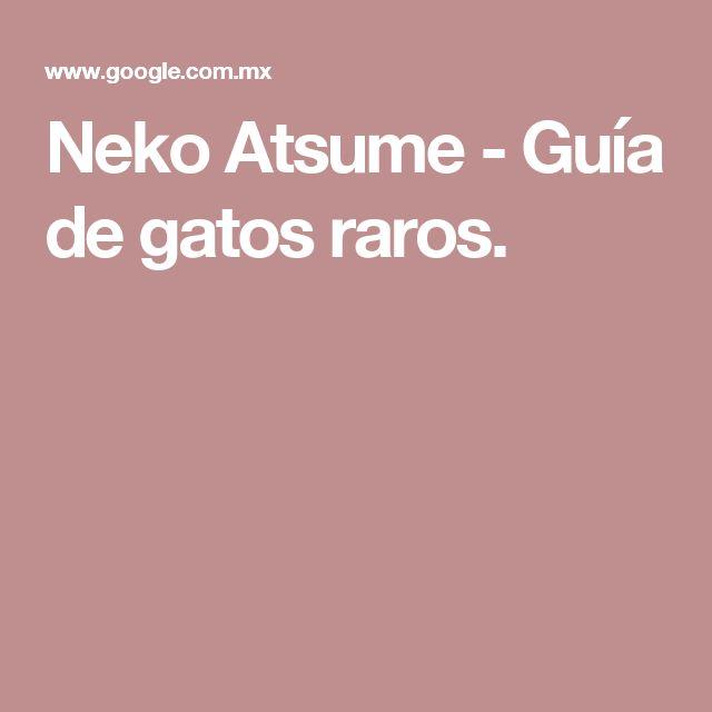 Neko Atsume - Guía de gatos raros.