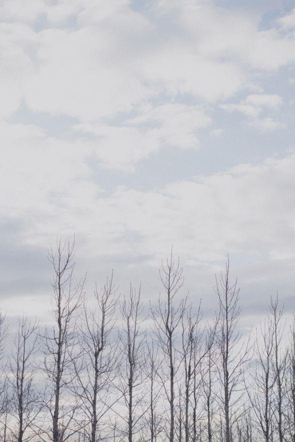 The Golden Circle: Geysir, Gullfoss, Thingvellir by Rebecca Doug