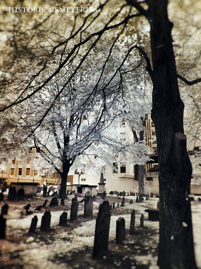 #Thanksgiving  Mary Chilton (1607–1679) sailed on the Mayflower as a 14-year old Pilgrim in 1620. She is reported as the 1st Englishwoman to step ashore at Plymouth, New England, America. Now she lies under these old trees in Boston - at center, the tomb with the iron plaque.   https://www.facebook.com/photo.php?fbid=694313613914569&set=a.195124047166864.49726.156099414402661&type=1&theater