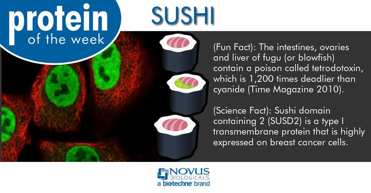 Protein of the Week: sushi Fun Fact: The intestines, ovaries and liver of fugu (or blowfish) contain a poison called tetrodotoxin, which is 1,200 times deadlier than cyanide (Time Magazine 2010). Science Fact: Sushi domain containing 2 (SUSD2) is a type I transmembrane protein that is highly expressed on breast cancer cells. #antibodies