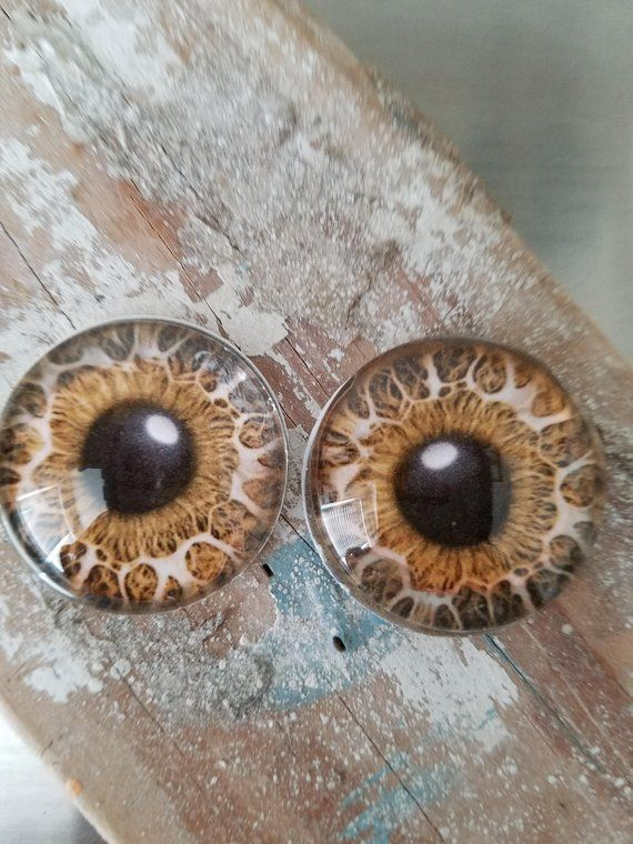 Glass Eye Cabochon 25 Mm Doll Eye 1 Inch Eyeballs Animal Eye Glass Dome Eyes Flat Back Jewelry Supply Pendant Glass Round C Glass Eyeballs Doll Eyes Glass Eyes
