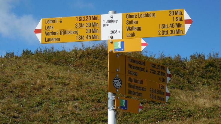 pass no 12: Trütlisbergpass (Via Alpina Switzerland)